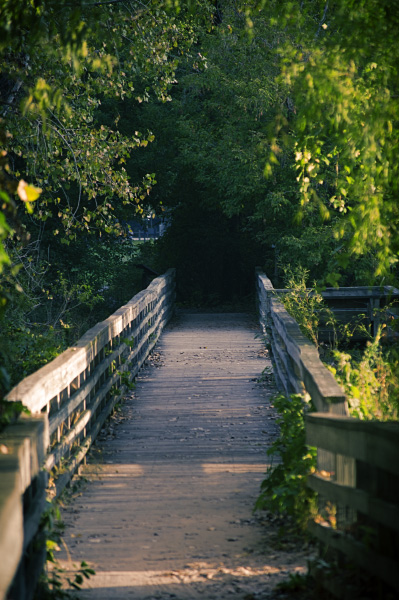 Bay CIty State Park Walkway