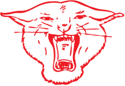 Wildcat-Red-Trans